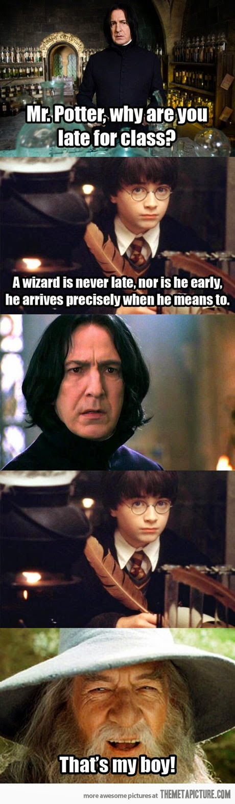 Funny Harry Potter Snape wizards