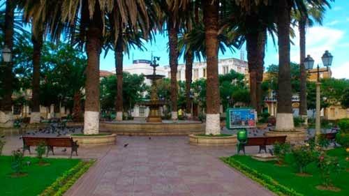 Inicia campaña para eliminar roedores de plazas y parques