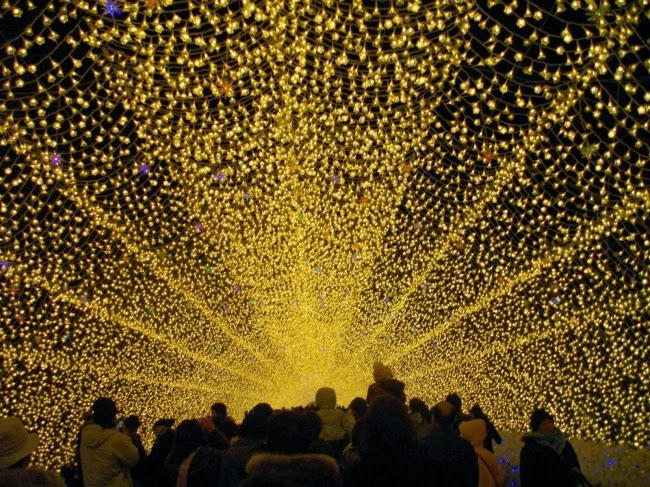 Зимнее освещение ботанического сада Набано Но Сато в Японии