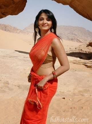 anushka shetty hot in saree hot anushka shetty saree