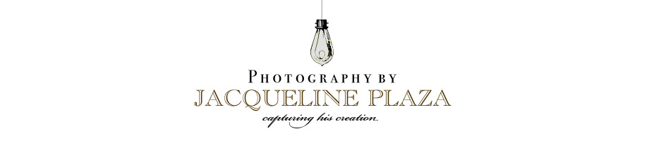 Jacqueline Plaza Photography