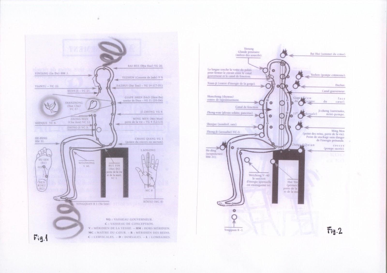 Despre reiki radiestezie si alte asemenea considerations about despre reiki radiestezie si alte asemenea considerations about violet breathkidney breath presentation of dumo breath buycottarizona Images