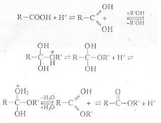Mekanisme reaksi esterifikasi dengan katalis asam