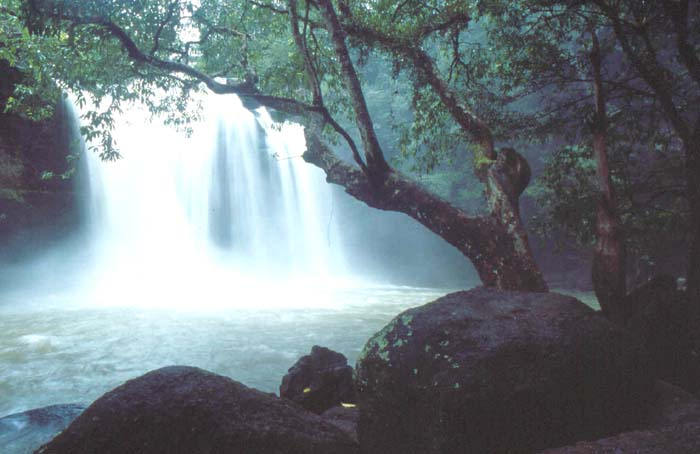 Enjoy the peaceful nature of Khao Yai National Park ...