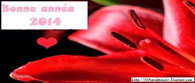 sms gratuit pour bonne année 2014 - sms d'amour