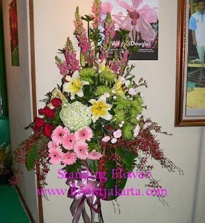 bunga standing congratulation