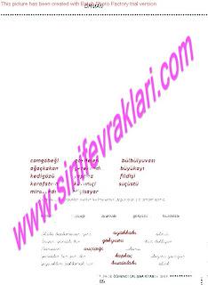 6.Sinif  Turkce Doku Yayinlari Ogrenci Calisma Kitabi Sayfa 85