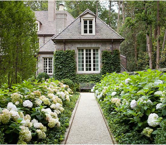 The zhush dream gardens for Dream plants for the natural garden