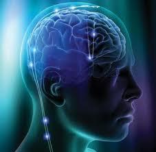 Πως Λειτουργεί ο Νους; Νευροεπιστήμη, εγκέφαλος, νους και συνείδηση.