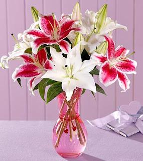 Jual Bunga Lily ucapan pembukaan toko