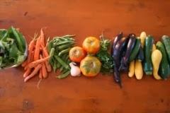 Alimentos orgânicos não tem agrotóxicos
