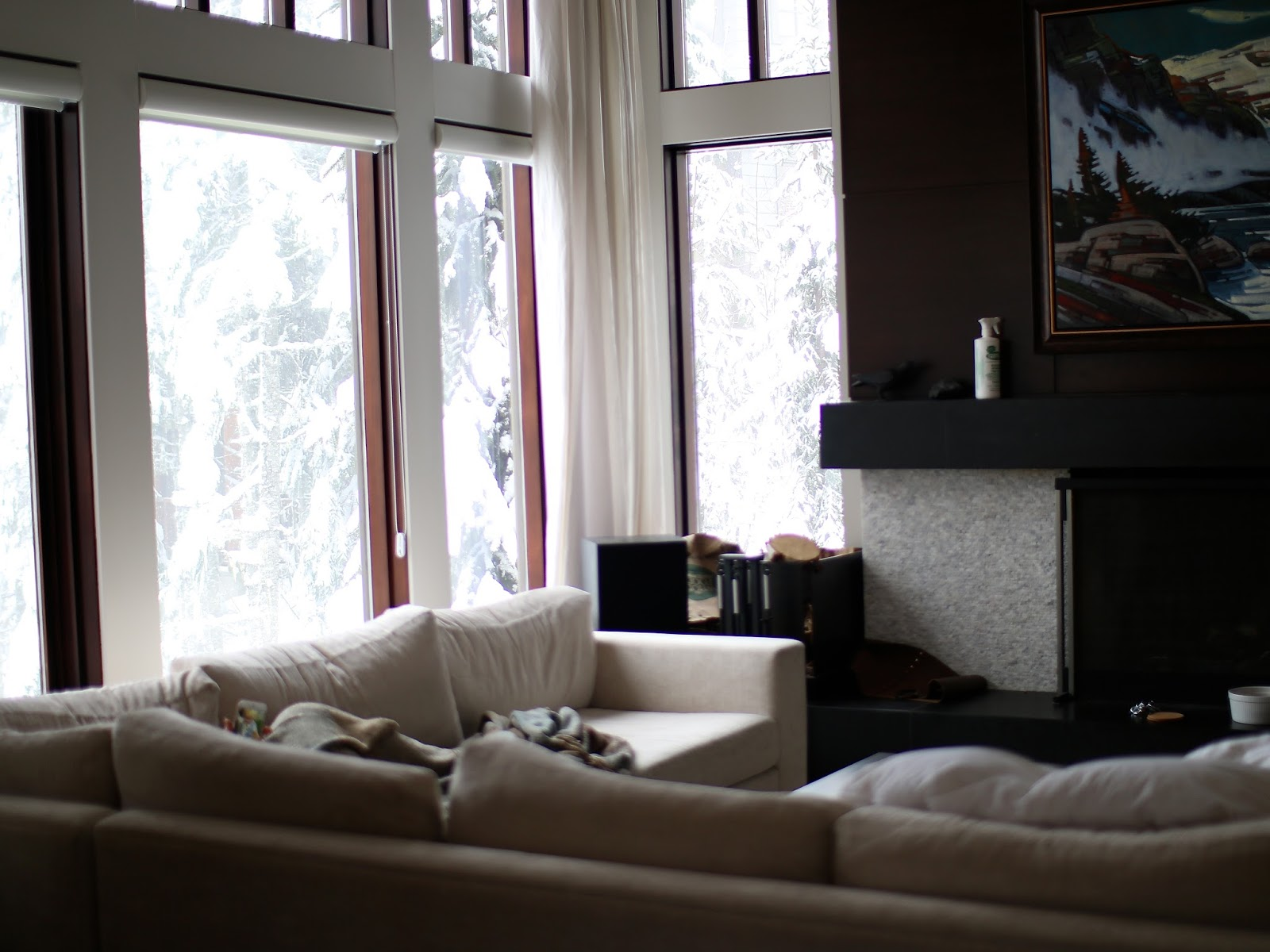 beautiful whistler property and interior decor in cabin