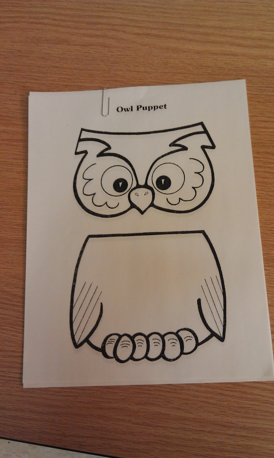 one little librarian toddler time all about owls