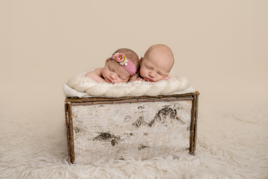 eugene springfield oregon twin newborn photography