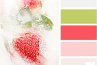 Отличный сайт по подбору цвета и сочетания цветов