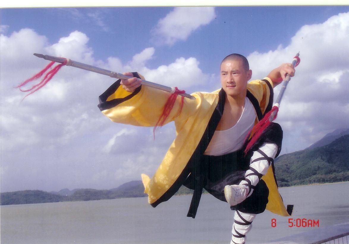 Wushu Kung fu T...