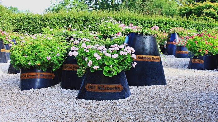 Chaumont sur loire festival des jardins le jardin des for Jardin de chaumont 2015 tarif