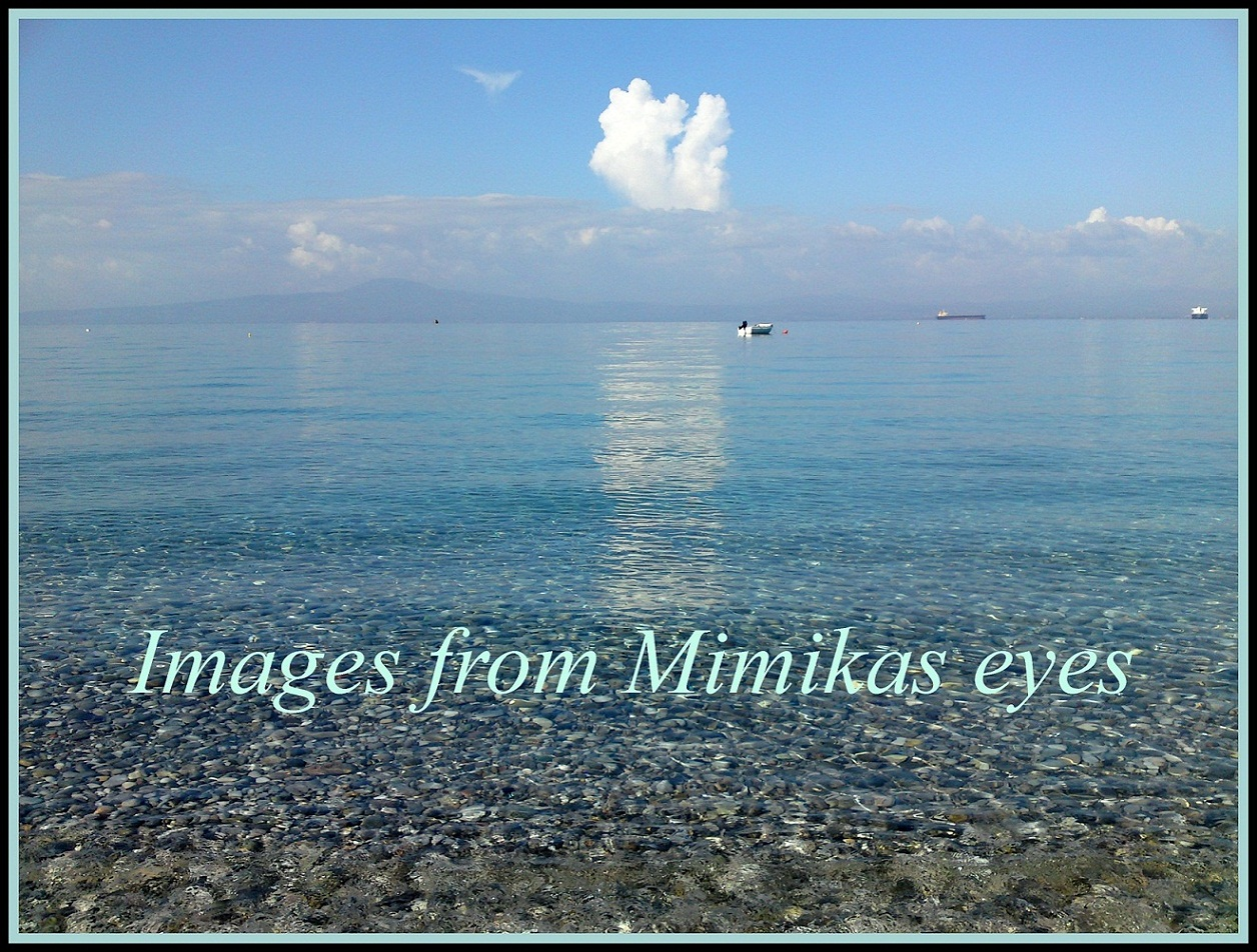Images from Mimika,s eyes