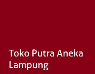 Lowongan Kerja Toko Putra Aneka Lampung