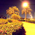 Qatar corniche doha park night vision Photos