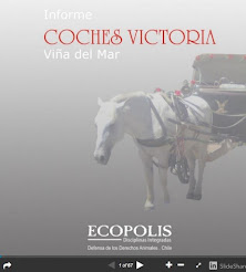 BITÁCORA DE OBSERVACIÓN coches victoria Viña del Mar 2011-2012