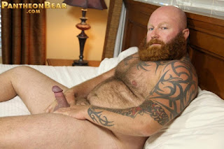 gay hairy bear nude - bearded gay bear pantheon mens