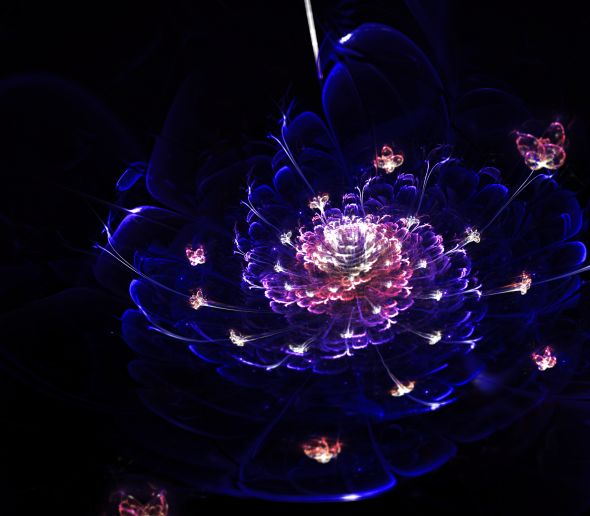 Silvia Cordedda deviantart arte fractais flores ilustração natureza ciência