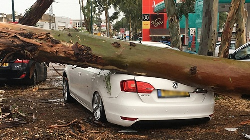 storm-damage-Israel