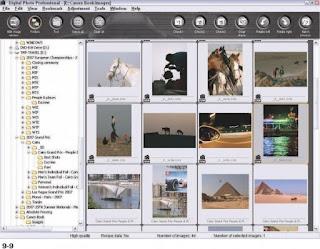 Digital Photo Professional canon