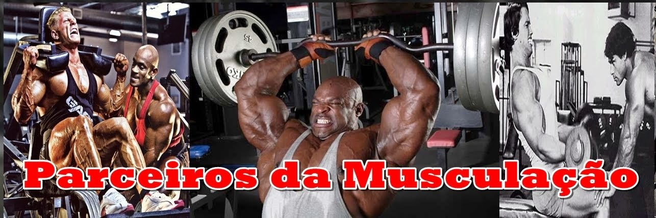 BLOG Parceiros da Musculação