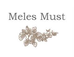 Meles's Blog