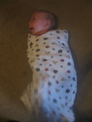 Swaddle Designs Picture 6