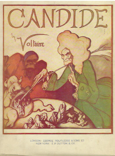 essay on satire in candide