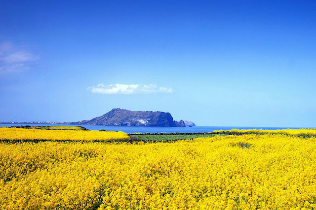 Jeju Island as one of the 7 Natural Wonders of the World