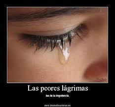 Las peores lágrimas son las de la impotencia.