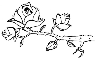 Desenho como desenhar Lindos Beija-Flor em lindas Flores pintar e colorir