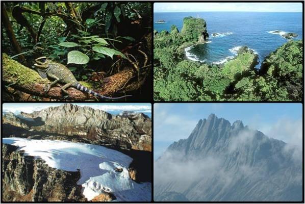 All About Papua Barat Kabupaten Fakfak