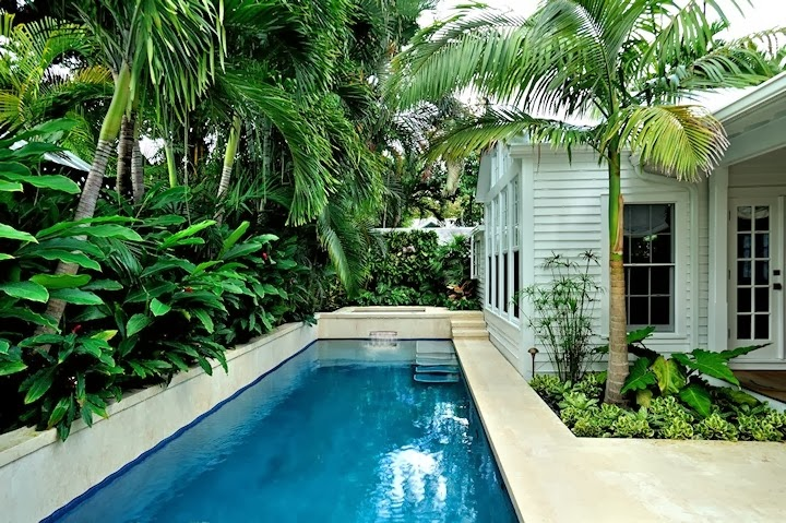 Dirtbin designs tropical gardens i love for Tropical pool gardens