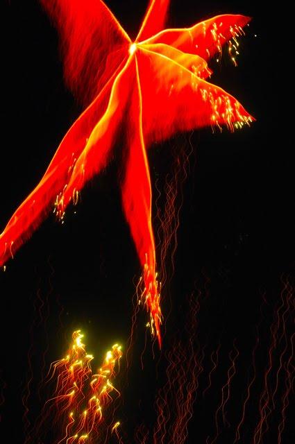 Firework 209