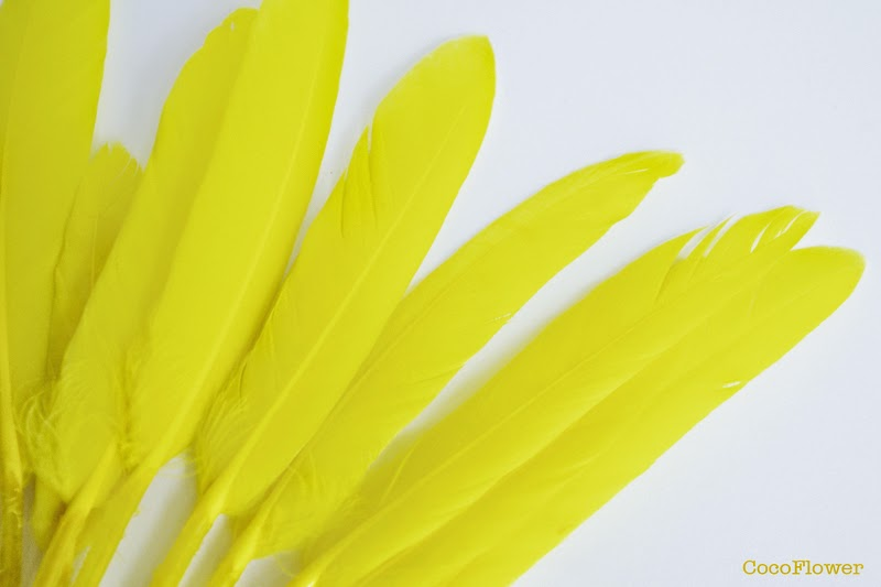 plume jaune - cocoflower.net