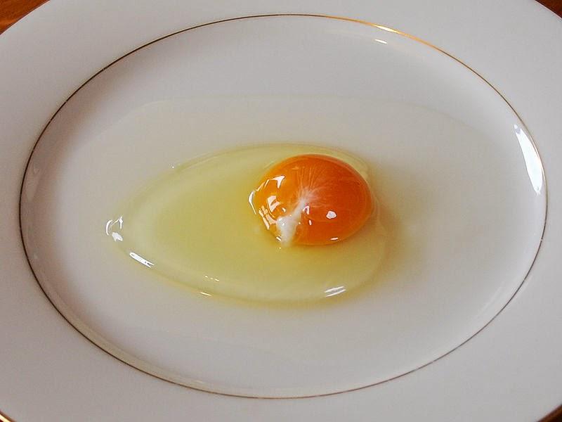 Khasiat Putih Telur