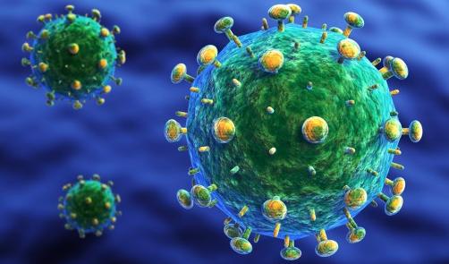 प्रतिरक्षा तंत्र पर एचआईवी के प्रभाव