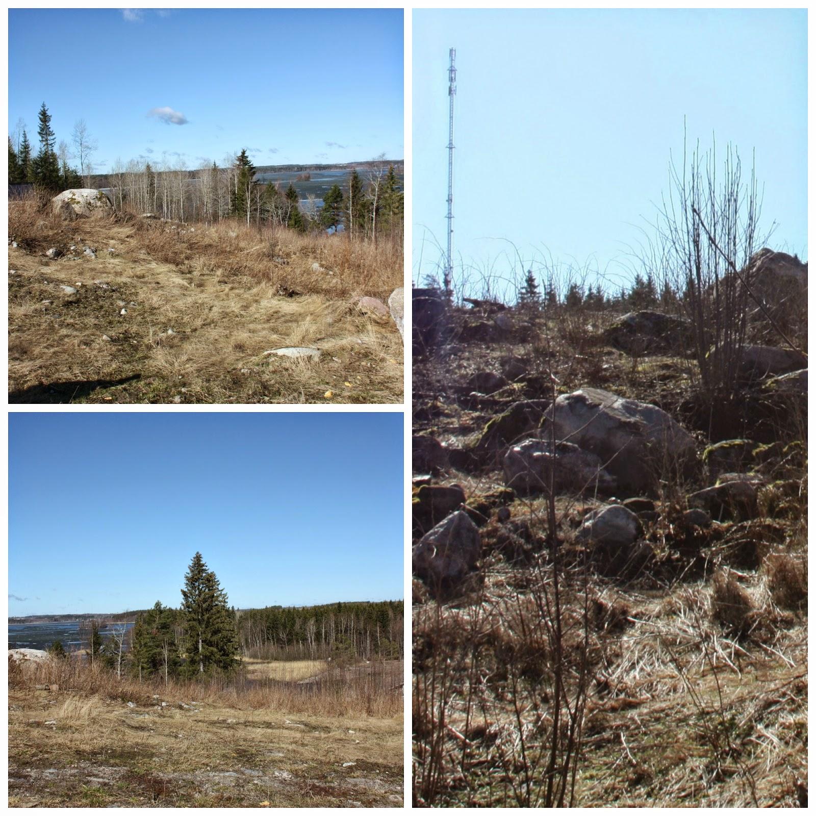 Puuta ja kiveä -raksablogin tontin alkutilanne