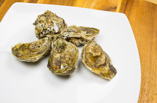 Photo of five whole oysters on a white plate