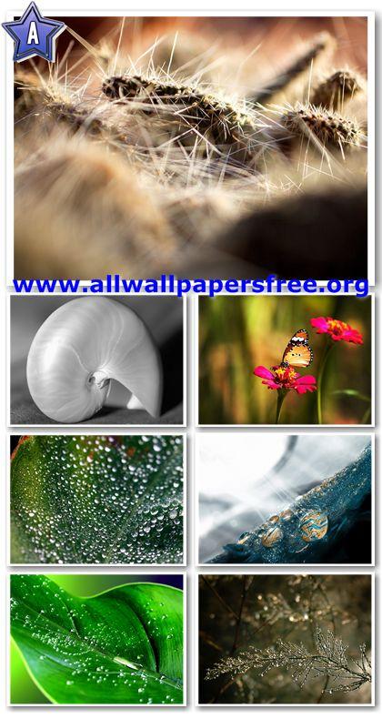 100 Impressive Nature Wallpapers 1600 X 1200 [Set 19]
