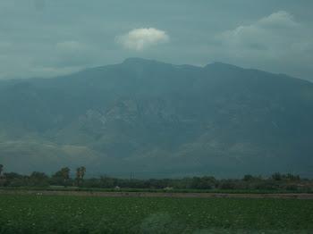 Mt. Graham