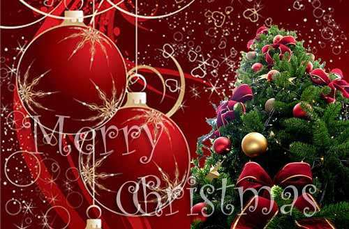 Image result for merry christmas wishes