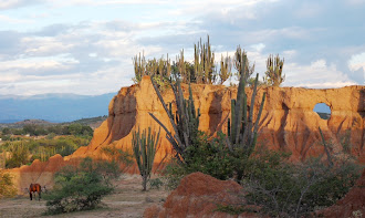 Como llegar al Desierto La Tatacoa