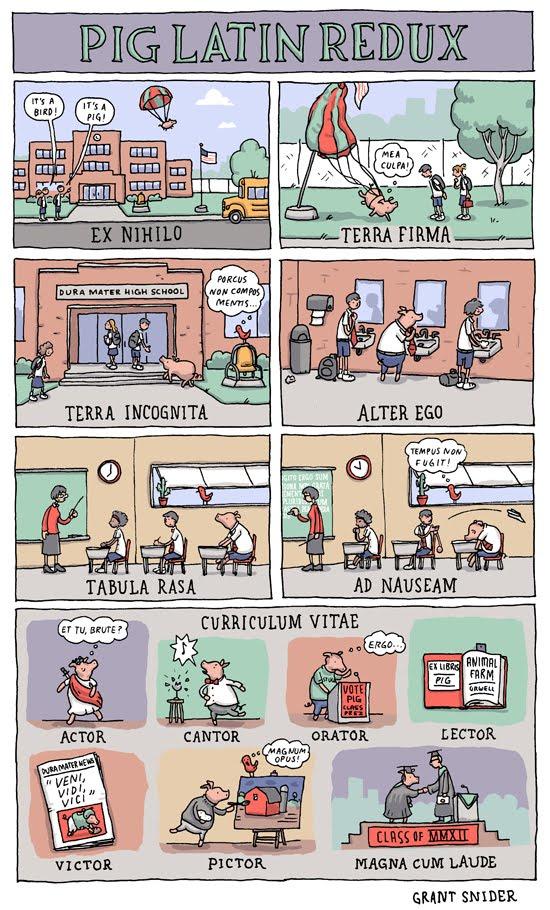 El cerdo latinista en el instituto