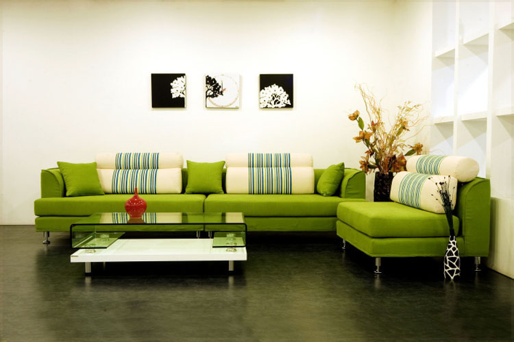 Living Room Designs with Green Couch